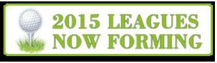 2015Leagues